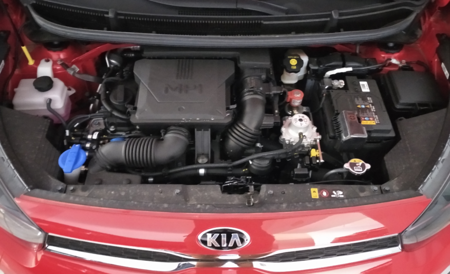 Kia new Picanto 1.0 DPI GPL 65 CV 5MT Style